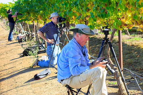 Hahn Wine Workshop participants sitting and photographing vineyards.