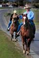 2 cowboys riding horses along a road.