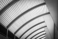 Abstract photo of curved ceiling.