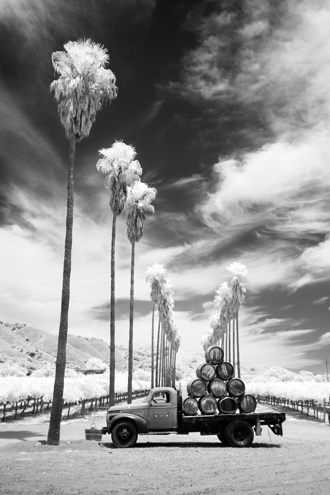 Palm trees, vineyard rows, John Steinbeck era truck, wine barrels… not only iconic for California, but also the signature image for the winery on their marketing materials—not this photo; this is my version of their brand photo using only infrared light. The winery was kind enough to leave this setup for all photographers to enjoy.