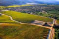 Aerial photo of vineyards changing autumn colors in the Steinbeck Country.