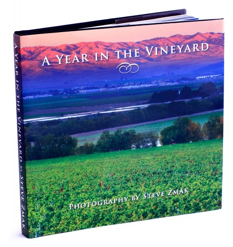 Book cover with purple mountains in the distance and green vineyards in the foreground.