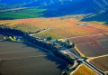 Aerial photo of green, yellow, orange, and red vineyards with a road, winery, and mountains.