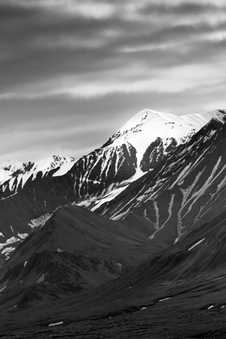 I've photographed a lot of U.S. national parks, but none have struck me with so much awe as Denali. It's a combination of the huge scale of everything, vast size of the 6 million acre park and preserve, preserved wilderness, and dazzling summer light to bring it all together.