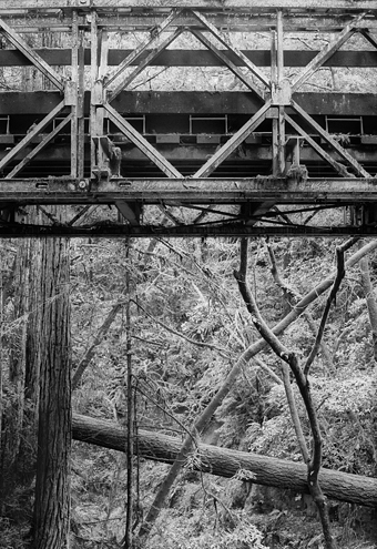 Juxtaposition between the engineered symmetry of an iron bridge with the chaotic order of the wooded natural world. Can the two live in harmony? If one wins, do they both lose?