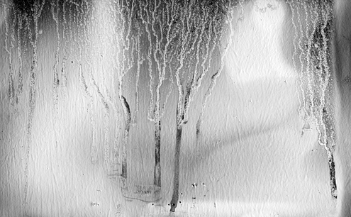 An enchanted forest blanketed with snow is the scene I saw inside a condemned Fort Ord building used by fire departments for training. This is the result of papers pinned to the former army office wall burning, creating soot, and being extinguished by sprays of water.