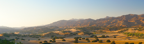 The golden light of late afternoon washes over this Central Coast landscape  of golden hills and - Golden Gabilan Mountains Panorama 1 - Coalinga-Parkfield Grade