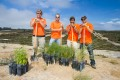 4 men pose with shovels and native plants ready to go in the ground.