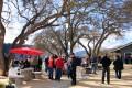 Wine festival under trees.