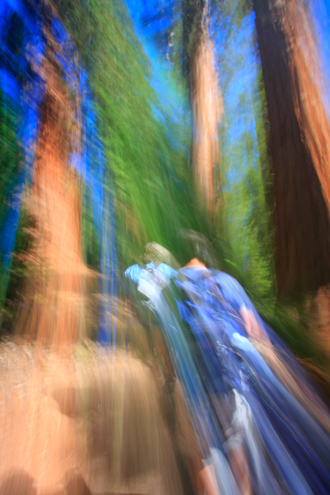Hikers launching off into the giant redwoods for the day. The technique of painting with lens allows me to illustrate the abstract energy of a scene.