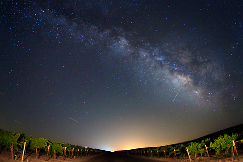 Vineyard Under The Stars San Lucas Monterey County