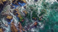 Aerial photo of the ocean waves washing around rocks and over a kelp forest. Shot with a drone camera.