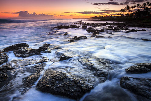 A lone surfer exits the ocean across lava rocks with king tides washing in and out just after sunset.